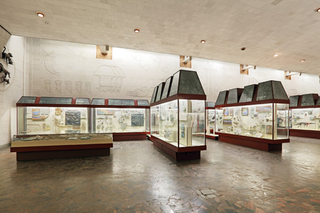 showpiece: Russia, interior of Moscow Paleontological Museum, exposition