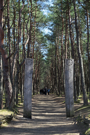 anomalous: Russia, Kaliningrad region, the Curonian spit, a guided tour of the anomalous zone Dancing forest