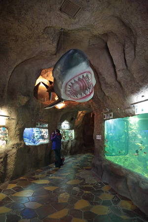 ichthyology: SOCHI, RUSSIA - FEB 27, 2014: Oceanarium in the Riviera Park, interior Editorial