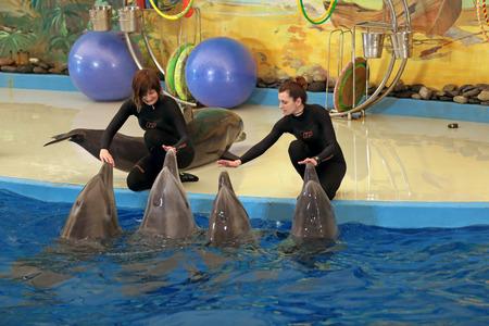 performs: SOCHI, RUSSIA - 27 MAR, 2014: Il Delfinario di Riviera Park. Gli istruttori effettua con i mammiferi marini - delfini