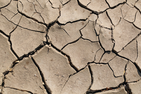 parched: Parched and cracked soil, brown