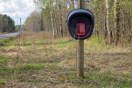 payphone: Public telephone near the road on the forest Stock Photo