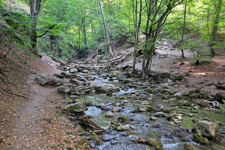 hydrological: Mountain river Ulu-Uzen East (Megapotamo) on the southern coast of the Crimea in the gorge Khaphal, Russia. The territory of the state of the hydrological reserve