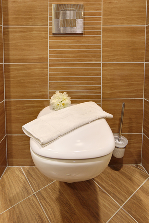 hemorrhoid: Modern toilet in the restroom interior