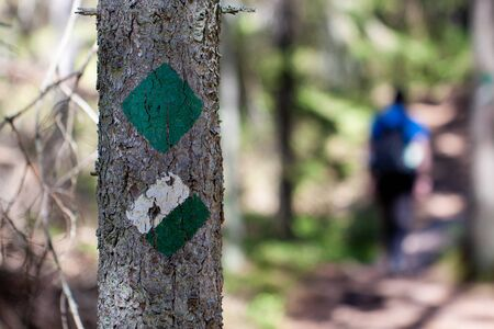 Green and white trail marker painted on a tree for hikers and tourists on a hiking trail - hiker in the background Stok Fotoğraf