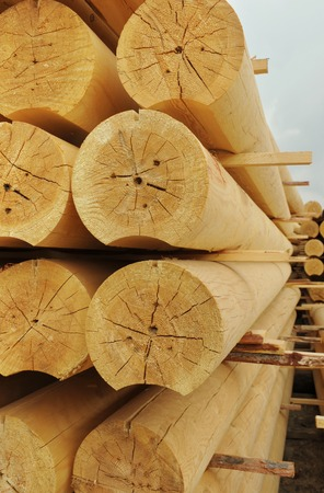 cylindrical: Heap of cylindrical logs Stock Photo
