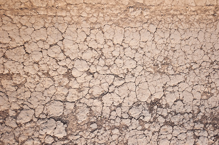 barrenness: Dried up cracked ground