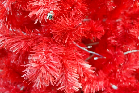 red christmas tree and background photo
