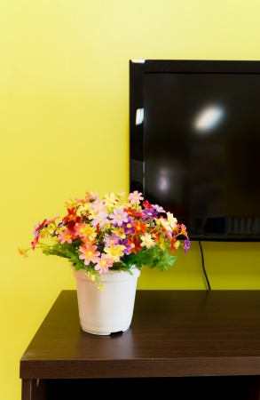 aromatic flower in living room photo