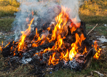 toxic burn trash danger for environment