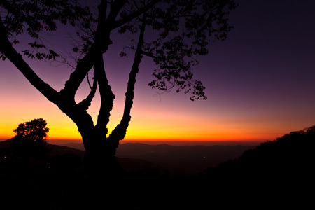 clody sky: silhouette tree after sunset on high mountain,Chiangrai Stock Photo