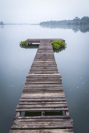 wood pier with fog in the morning Zdjęcie Seryjne