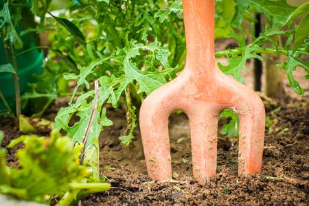 digging: shovel digging soil in garden
