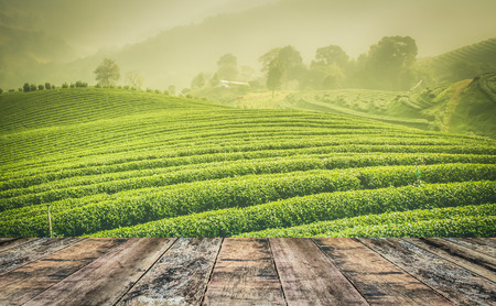 wood table top with tea field and mountain Stock Photo