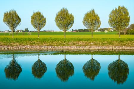 odraz stromů ve vodě podél kanálu Datteln-Hamm mezi Dortmundem a Luenenem