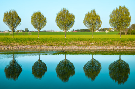 reflection of trees in water along the Datteln-Hamm Canal between Dortmund and Luenen