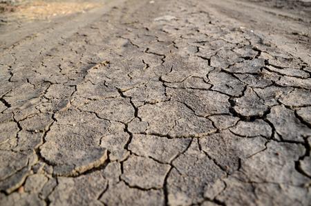 Dry Land Standard-Bild