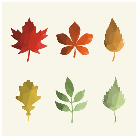 Vector color autumn leaves Ilustração