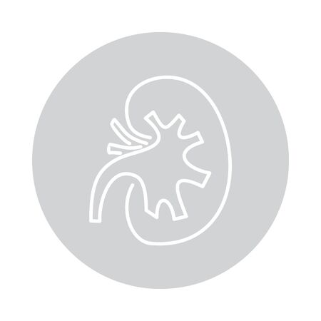 Vector kidneys icon in circle