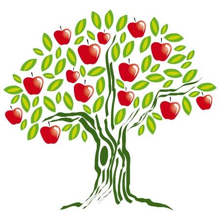 albero di mele: mela