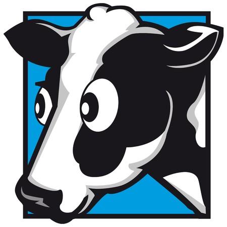 alpes suizos: carne de vaca