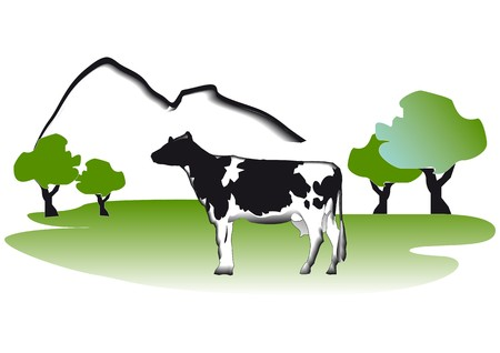 alpes suizos: Las vacas en el Prado