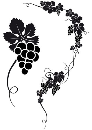 bunch of grapes: grape silhouette
