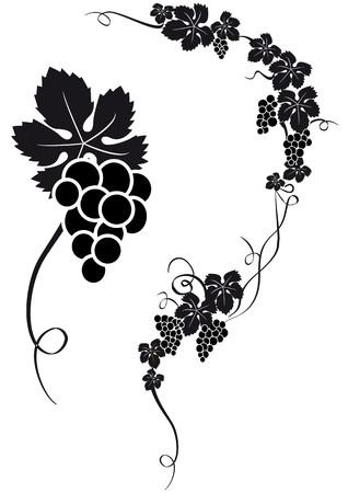 silhouette de raisin