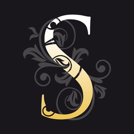 letra s: letra s, tipograf�a