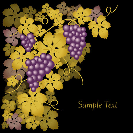 grapes gold Stock Vector - 7714142
