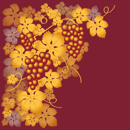 wine list: grapes red