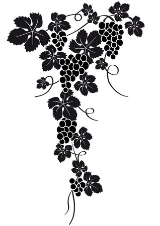 flower vines: grapes silhouette