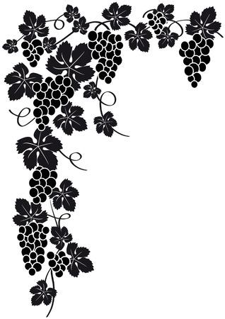 druiven silhouet  Vector Illustratie