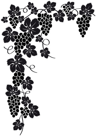 grapes on vine: grapes silhouette