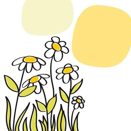 flower shop: Greeting margaritas Illustration