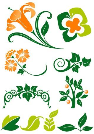 herboristeria: decoraci�n floral  Vectores