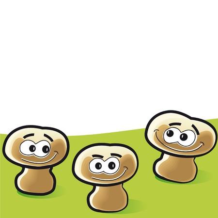 mycology: mushrooms Illustration