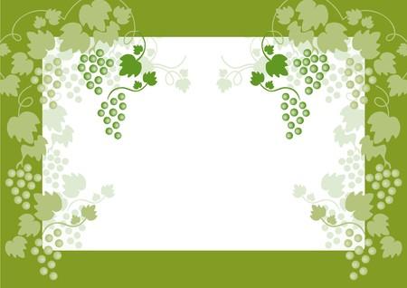 sommelier: uvas verdes