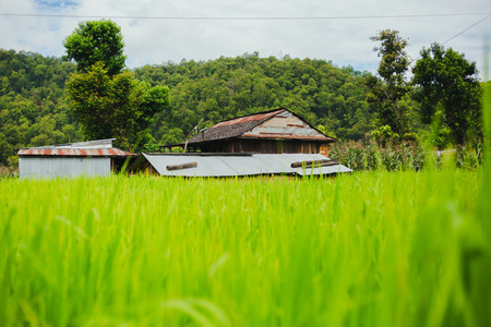 Scenery of beautiful Nepali traditional house with mountains  and green forest.It is in the hilly region of Gorkha Nepal.Breathtaking view,Dramatic and picturesque scene. Popular tourist attraction destinations.