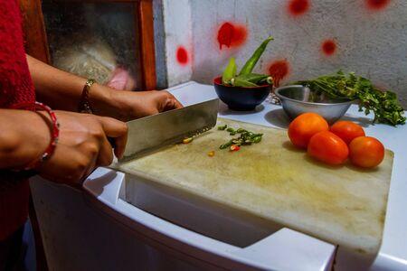 Woman hands chopping vegetables over deep freezer in the domestic kitchen room. Standard-Bild - 149121739