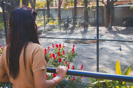 Happy Young Asian woman watching birds and animals at zoo.