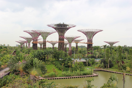 Gardens by the Bay, an integral part of a strategy by the Singapore government to transform Singapore from a  Garden City  to a  City in a Garden