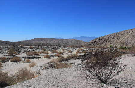 Desert Area near Thousand Palms Oasis Preserve in the Coachella Valley Preserve System, Southern California, United States of America photo
