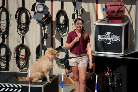 Los Angeles, California, USA - October 10, 2014: The trainer and trained dog are performing in Animal Show at Universal Studios Hollywood