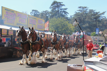 los angeles county: Pomona, California, USA - September 15, 2014: Carriage at the Los Angeles County Fair is one of the fourth largest fair in the United States. It, linking California