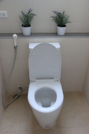 hemorrhoid: White Toilet in a Bathroom