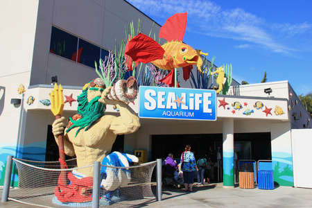 sealife: Carlsbad, California, USA - December 27, 2014: Sealife Aquarium at Legoland California provides an educational and interactive dynamic about sealife.