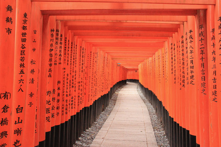 messengers of god: Fushimi Inari Taisha Shrine is the head shrine of Inari including trails up the mountain to many smaller shrines which span 4 kilometers in Kyoto, Japan.