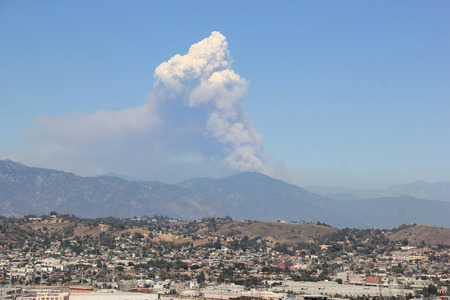 firestorm: Wildfire burning forest on a mountain in Los Angeles, California