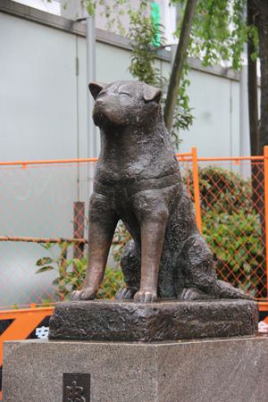 Tokyo, Japan - April 13, 2015: Statue of Hachiko, an Akita dog which is remembered for his remarkable loyalty to his owner, is a popular meeting spot at the Shibuya Station.